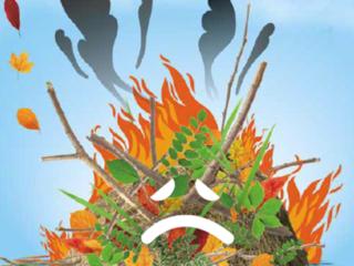 Le brûlage à l'air libre des déchets verts : C'EST INTERDIT